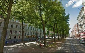 Vasagatan före trädfällning.